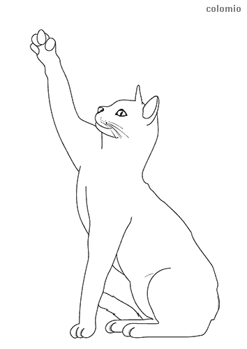 Cat with raised paw coloring page