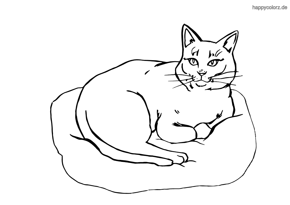Russian Blue coloring page