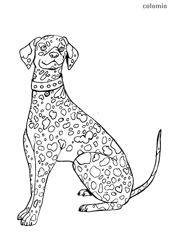 Carriage dog coloring page