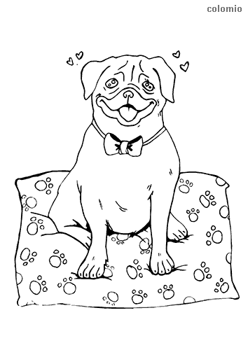 Cute pug with hearts coloring page