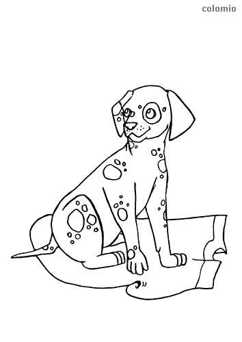 Dalmatian puppy coloring page
