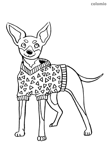 Pinscher with dress coloring page