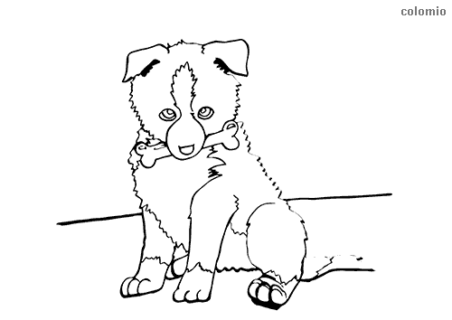 Simple Animal Coloring Pages | Simple dog coloring page | Dog ... | 354x500