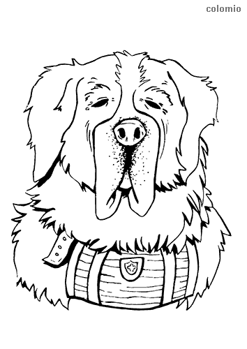 St. Bernard head coloring page
