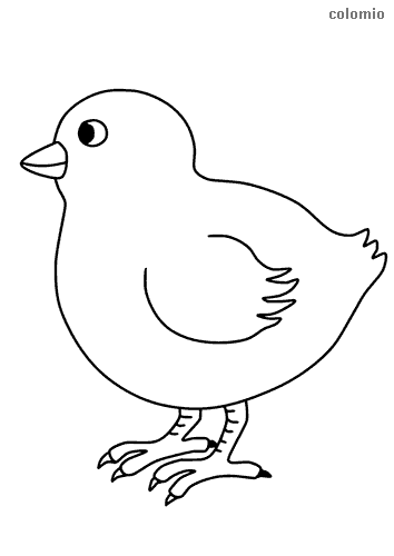 Simple chick coloring sheet