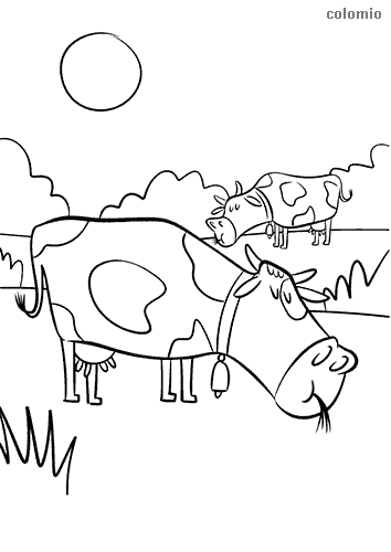 Grazing cows coloring page