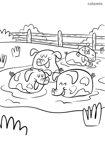 Pigs having fun in the mud coloring page