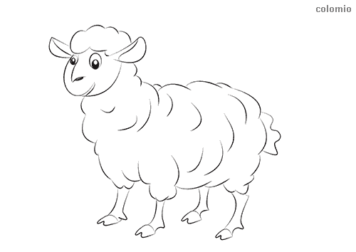 Funny sheep coloring sheet