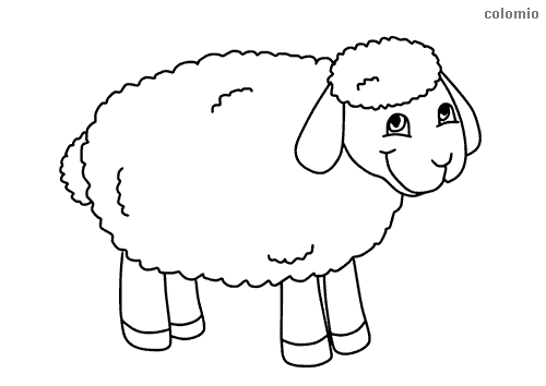 Sweet lamb coloring page