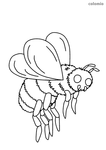 Flying bee coloring sheet