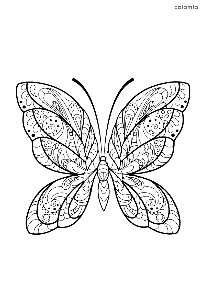 Complex butterfly coloring page