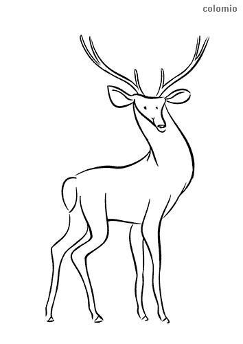 Funny deer coloring page