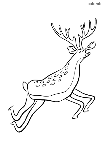 Funny jumping deer coloring page