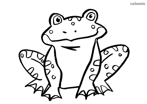 Smiling frog coloring sheet