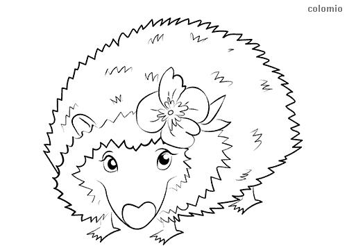 Dibujo de Erizo con flor para colorear
