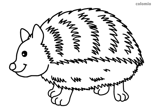 Forest Animals Coloring Pages » Free & Printable » Forest Animals Coloring  Sheets