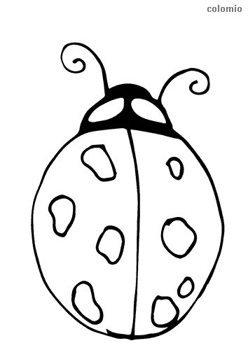 Simple ladybug coloring sheet
