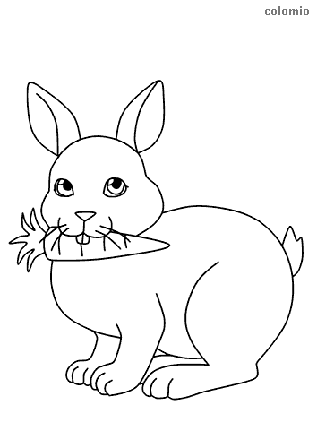 Cute rabbit with carrot coloring page