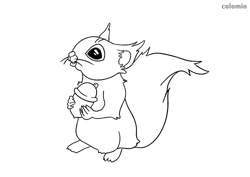 Cute squirrel coloring page
