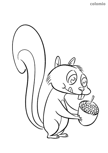Hungry Squirrel coloring sheet