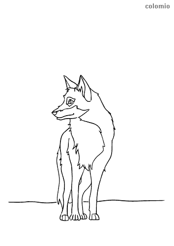 White wolf coloring page