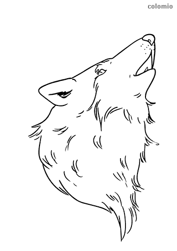 Wolf head coloring sheet