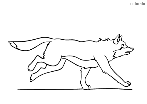 Wolf on the hunt coloring sheet