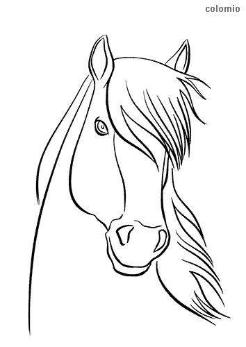 Cute horse head coloring page