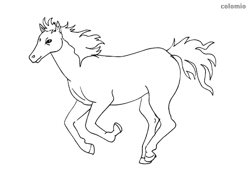 Foal galloping coloring page