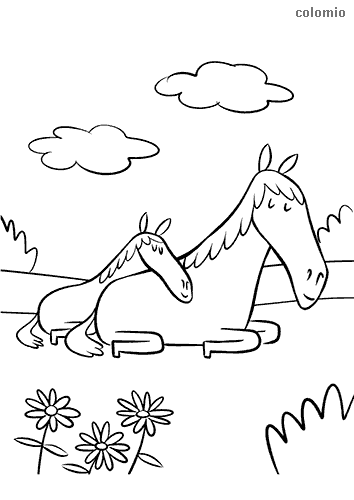 Foal with horse mother coloring page