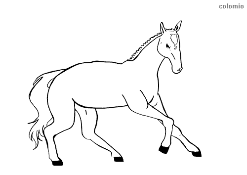 Galloping foal coloring page