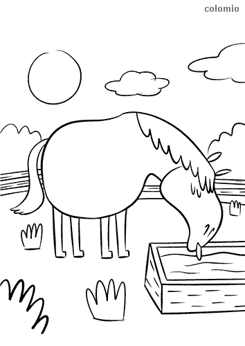 Horse at the drinking trough coloring page