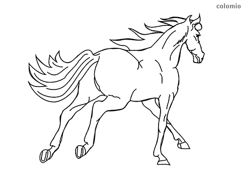 Horse galloping coloring page