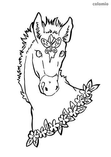 Horse head with butterfly and flowers coloring page