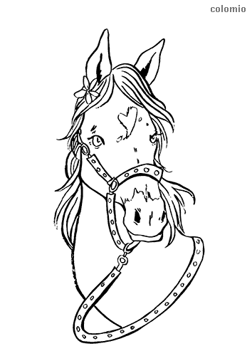Horse head with harness coloring sheet