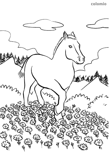 Horse in a flower meadow coloring page