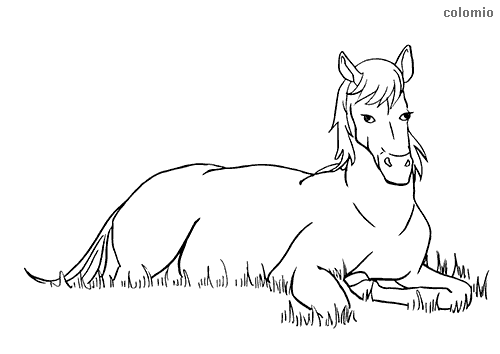 Horse lying down coloring sheet