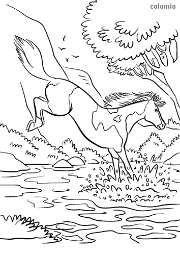 Horse on the river coloring page