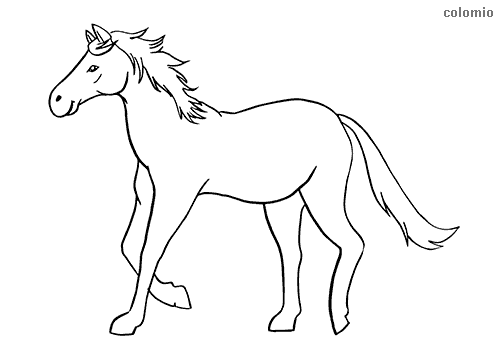 Horse trotting coloring page