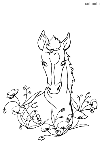 Horse with flowers coloring page