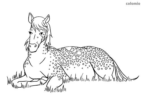 Dibujo de Knabstrup recostado para colorear