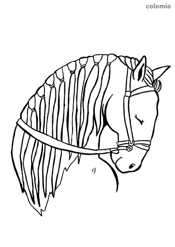 Sleeping horse head coloring pages