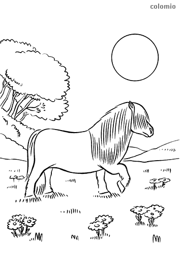 Strong horse coloring page