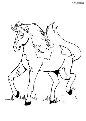 Trotting foal coloring page