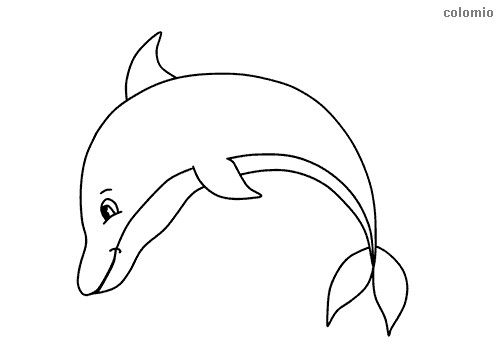Jumping dolphin coloring sheet