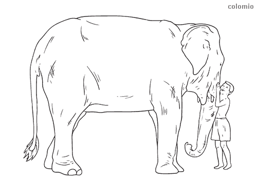 Elephant with child coloring page
