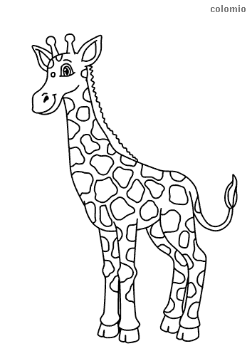 Funny giraffe coloring sheet