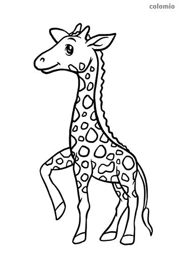 Dibujo de Jirafa sencilla para colorear
