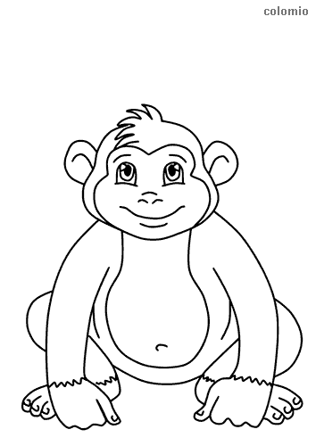 Simple monkey coloring page