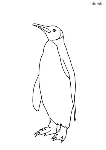Easy penguin coloring sheet